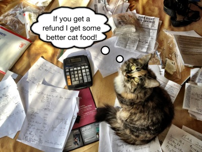 "Cat ""helping"" with tax return"